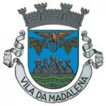 http://www.cm-madalena.pt/